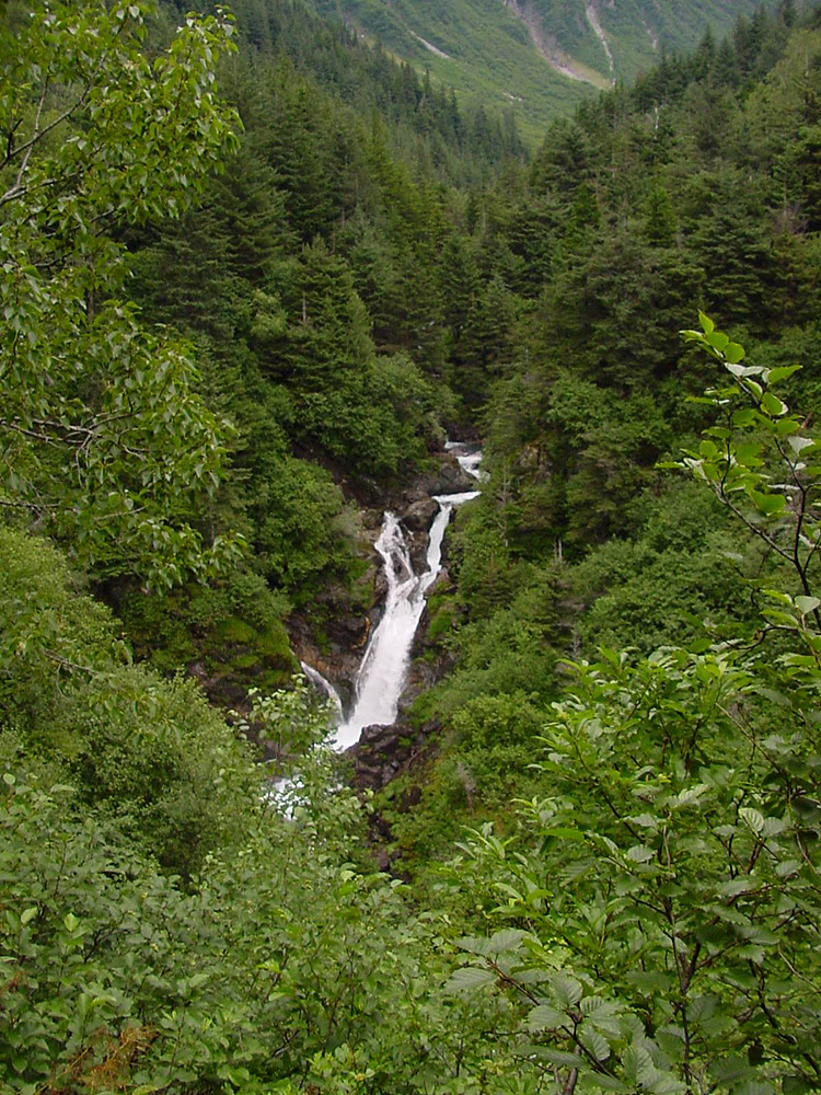 Ebner Falls on Gold Creek from the Perseverance Trail.