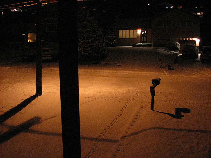 Snow Illuminated by a High Pressure Sodium Street Light.