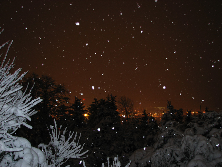 Snow Falling in the Darkness of Early Morning.