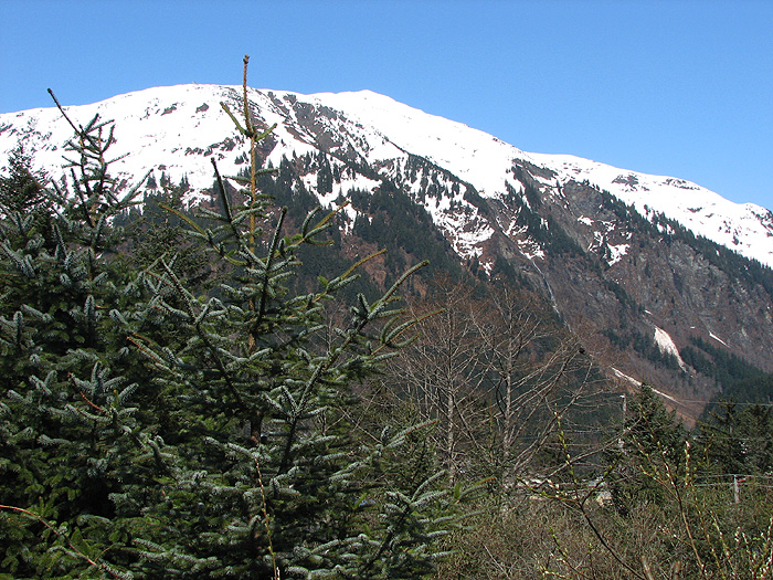 Mt. Juneau on May 7, 2013.