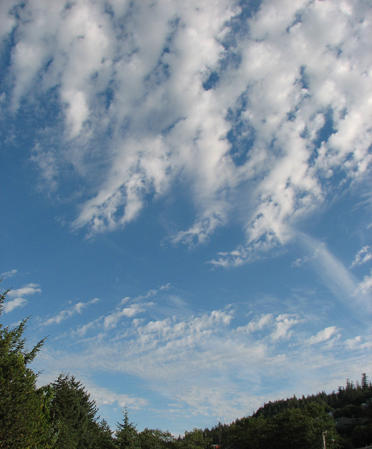 Clouds in a Blue Sky Looking SE from the West Juneau Weather Station.