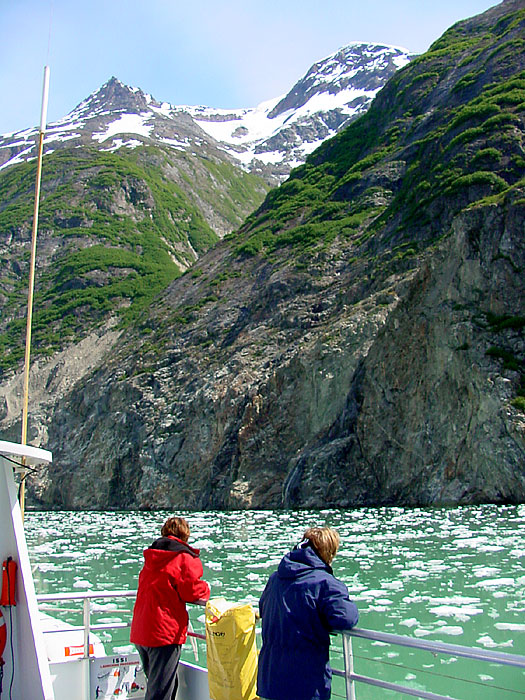 In Tracy Arm Fjord.