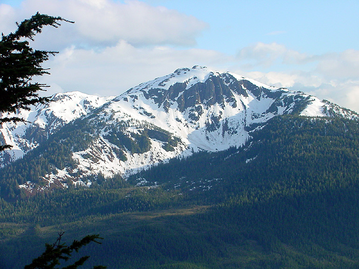 Mount Bradley.