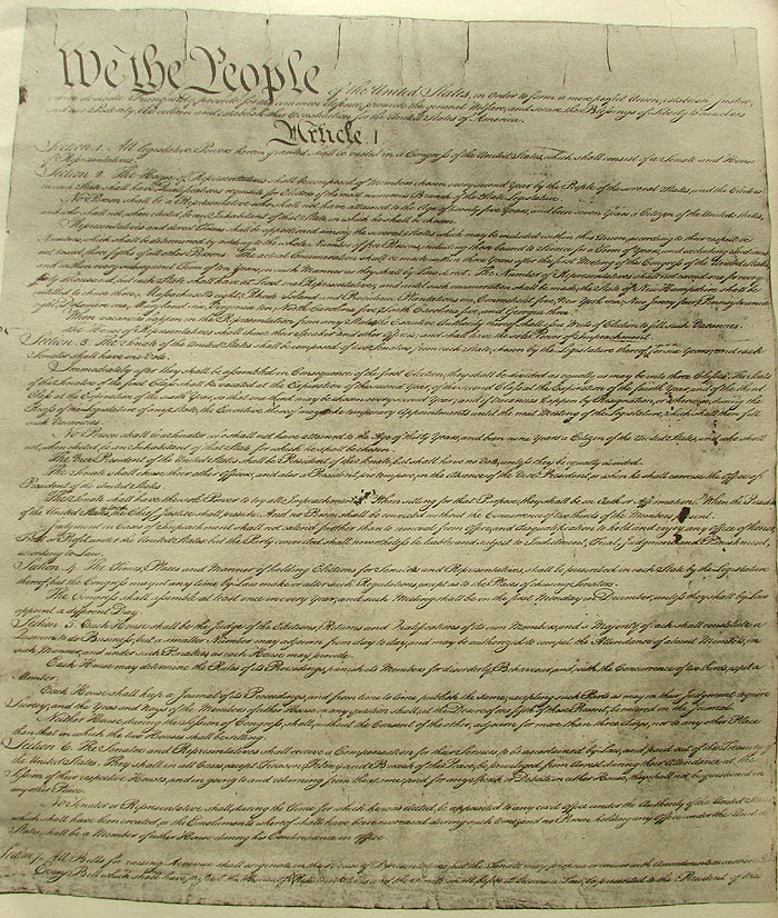 is the 1st amendment of the american constitution taken for granted The american government and the constitution  1st amendment freedom of speech, press, religion, assembly, petition 2nd amendment right to bear arms 3rd amendment  the articles granted limited powers to the central government, reserving most powers for the states the result was a poorly defined national state that couldn't govern.