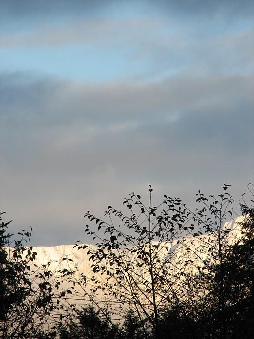 A Part of Heintzleman Ridge.